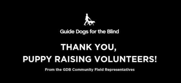 """A screen shot of the opening slide of the featured video that reads """"Thank you, Puppy Raising Volunteers! From the GDB Community Field Representatives"""""""