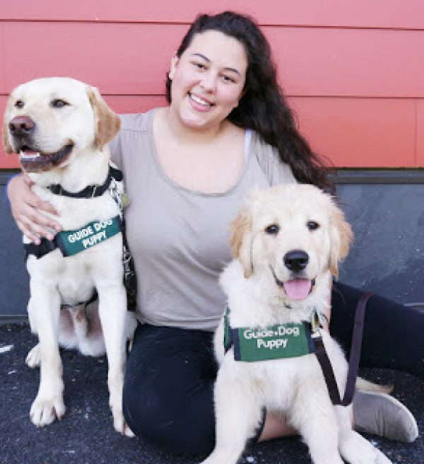 Delphine with both a yellow Lab guide dog puppy and a Golden Retriever guide dog puppy.