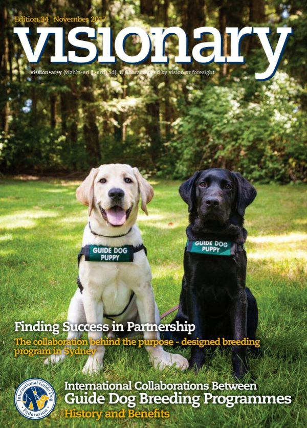 The cover of the November 2017 Visionary features two of our guide dog puppies in training. A yellow Lab and a black Lab both wearing green GDB puppy coats sit together on green grass and gaze into the camera.